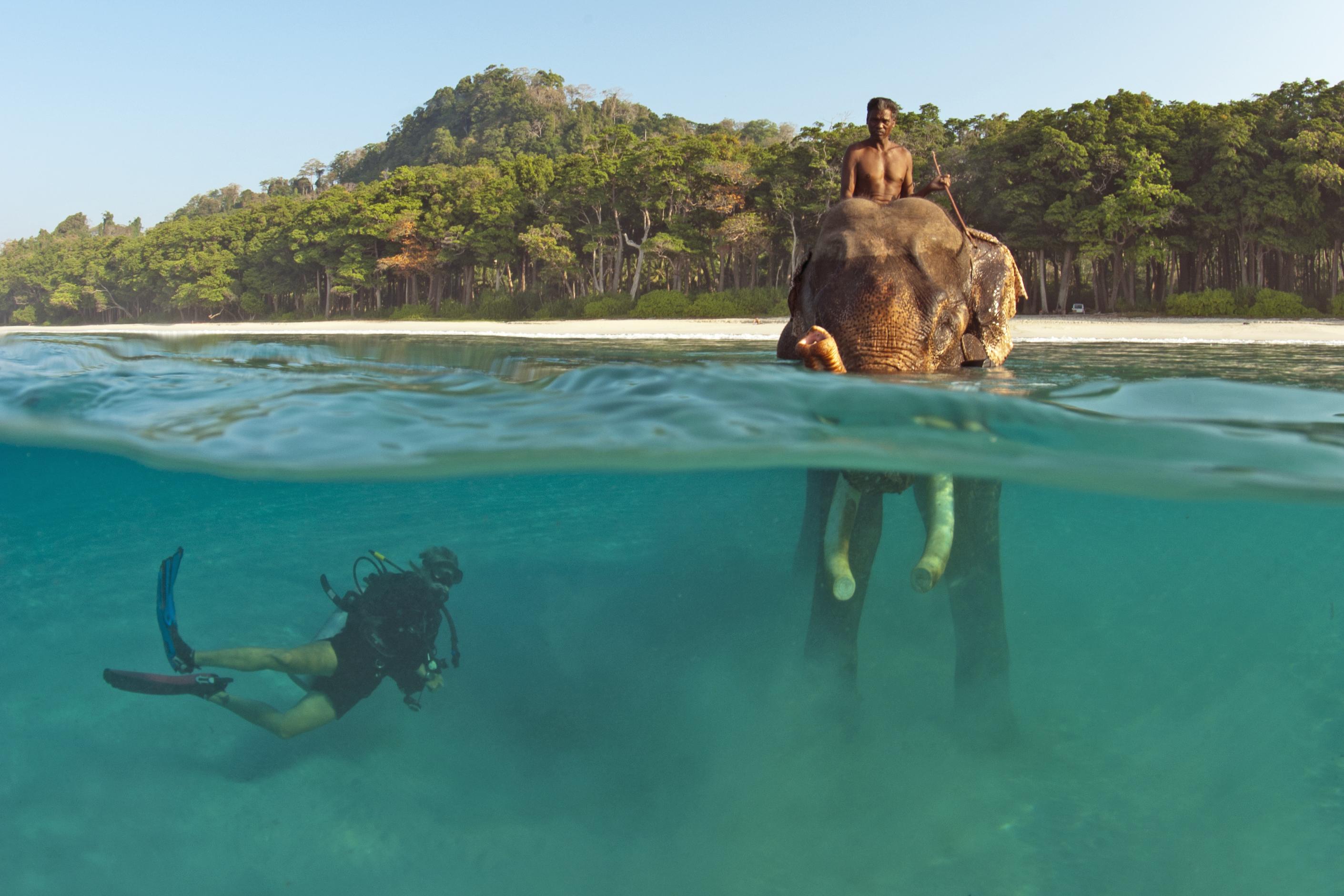 Havelock Island Barefoot Resort