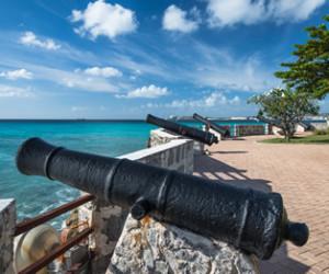 Bridgetown Cannons393x262