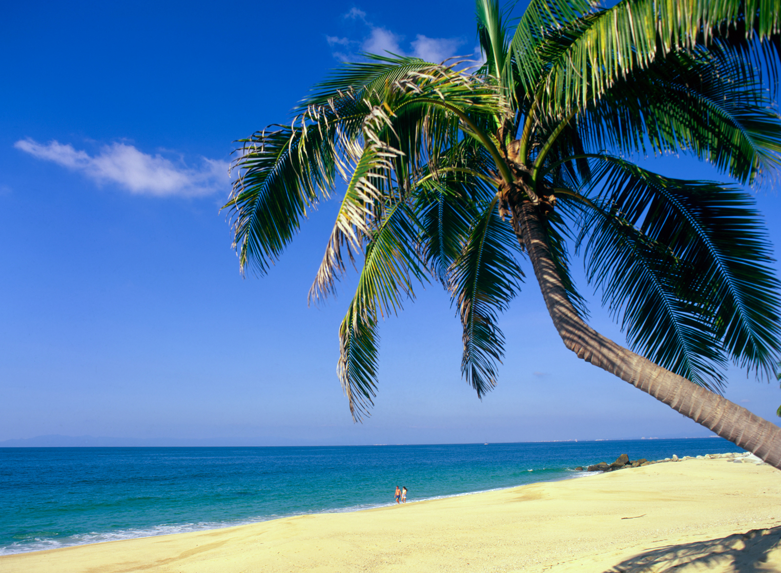 Barbados Beach |Fleewinter Tailor-Made Holidays