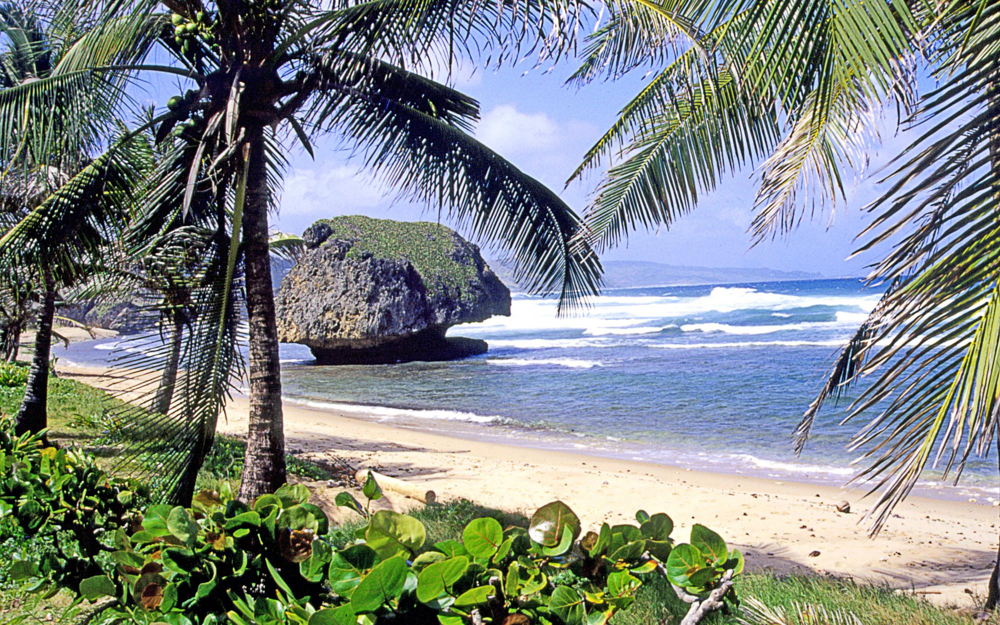 Bathsheba Beach | Fleewinter Tailor-Made Holidays