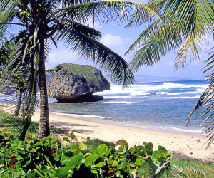 Bathsheba Beach | Fleewinter Tailor-Made Holidays