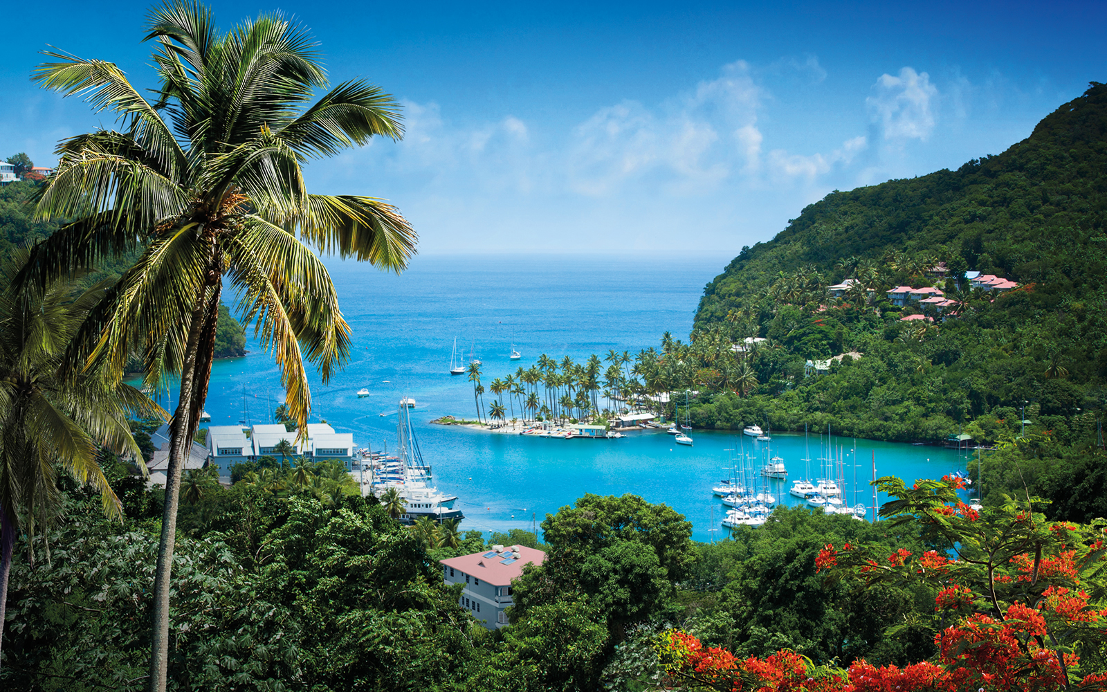 Marigot Bay St Lucia| Fleewinter tailor-made holidays