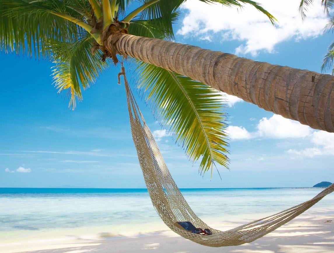 Tobago hammock