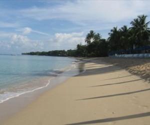 Unit 305 Glitter Bay 1 Bedroom Barbados Apartment |Fleewinter