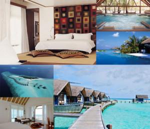 cocoa_island_maldives