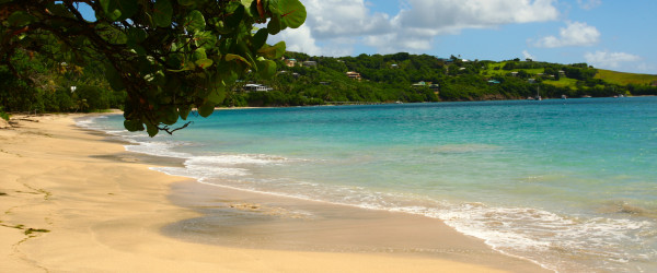 Bequia Friendship Beach|Fleewinter tailor-made holidays