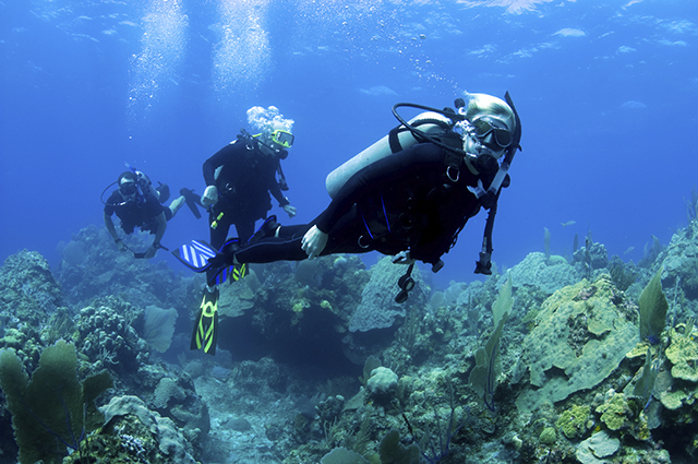 Diving i n the BVI |Fleewinter tailor-made holidays