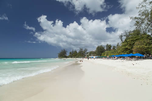 Explore The Beauty Of Caribbean: Lime In Barbados