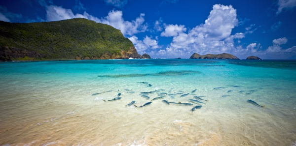 Lord Howe Island Australia holiday