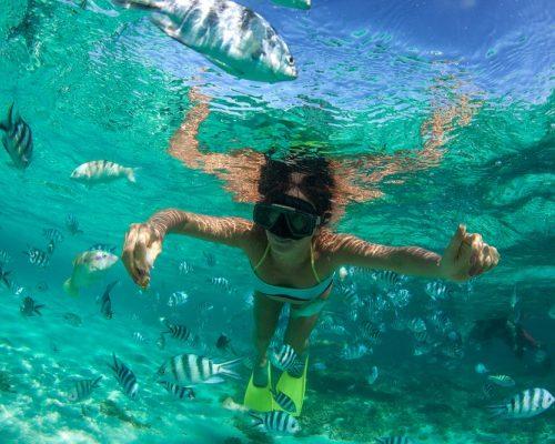 Mauritius Holiday Snorkeling