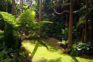 Hunte's Gardens - book with Fleewinter