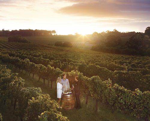 Leeuwin Estate Winery Margaret River