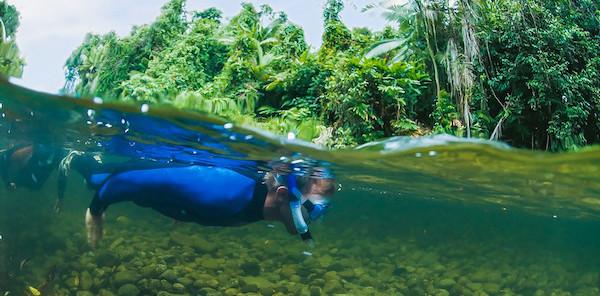 Drift Snorkel Mossman
