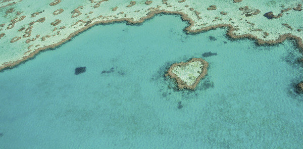 Heart Reef Whitsundays