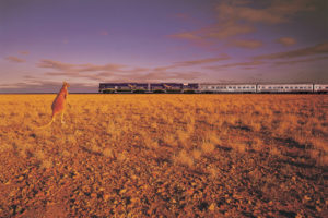 The Indian Pacific train Kangaroo