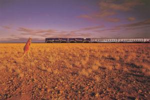 The Indian Pacific train Kangaroo