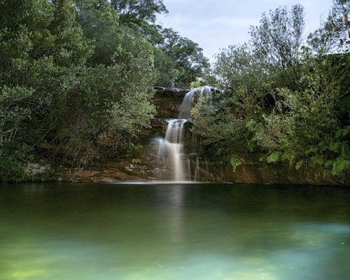 Royal National Park Sydney Day Tour