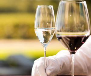 Gourmet Istria Food and Wine Tour