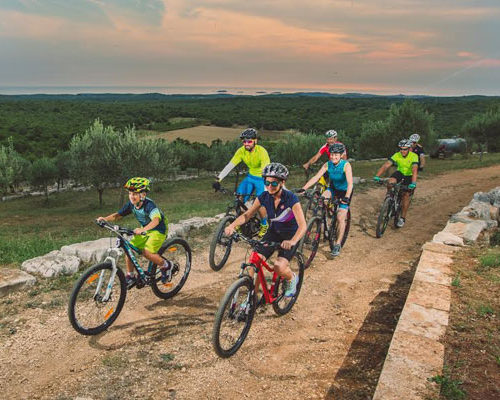 Family cycling in Istria