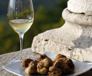 White truffles and white wine in Istria