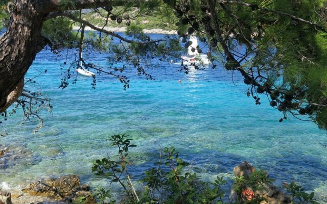 secluded cove turkey