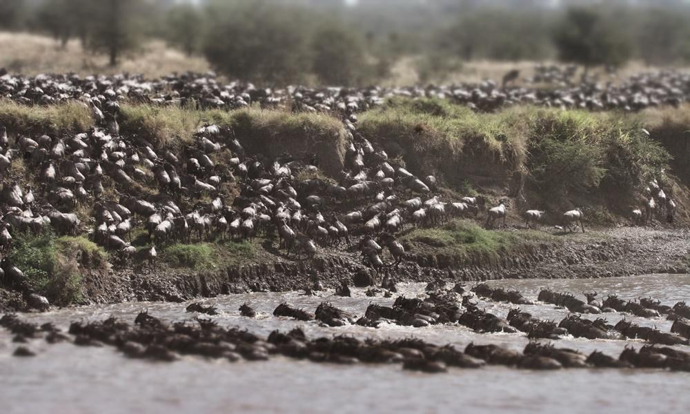 Serian Camp, Mara North Conservancy, Kenya | Fleewinter